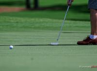 この画像は、サイトの記事「ゴルフレッスン パター 動画集 YouTube無料視聴映像まとめ!」のイメージ写真画像として利用しています。