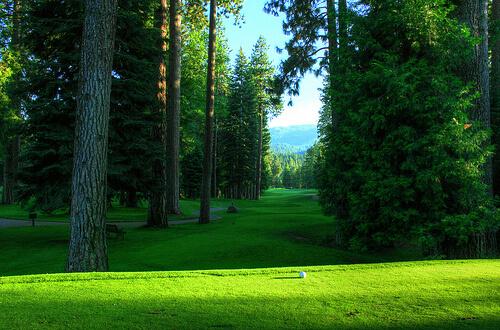 この画像は、サイトの記事「Tポイントレディス ゴルフトーナメント おすすめ動画満載! YouTube無料視聴映像まとめ!」のイメージ写真画像として利用しています。